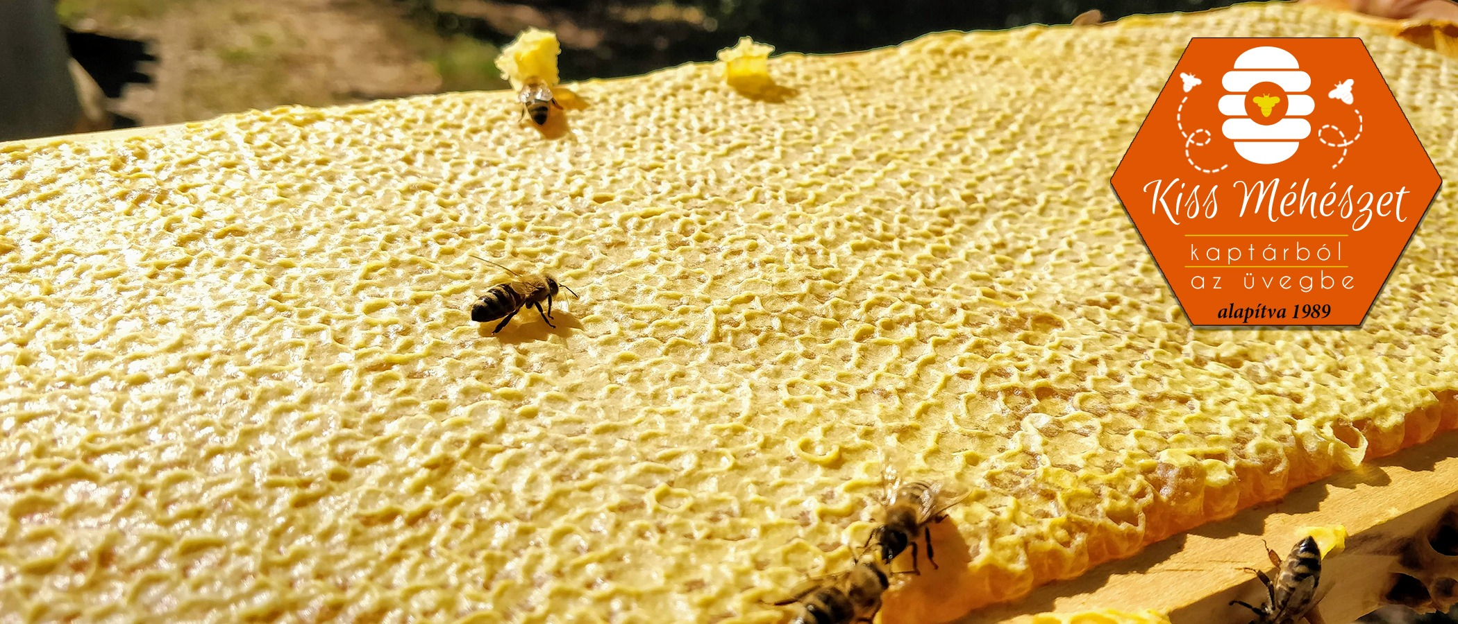 Székesfehérvár méz